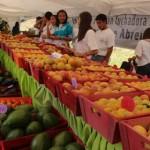 111713 MS Elias Jaua Feria Agroturistica El Jarillo 36